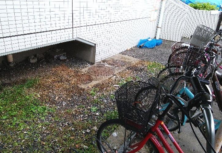 階段下や通路の隙間のゴミも撤去きたしました。