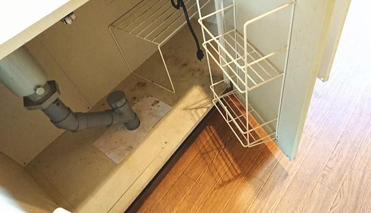洗面所の排水溝